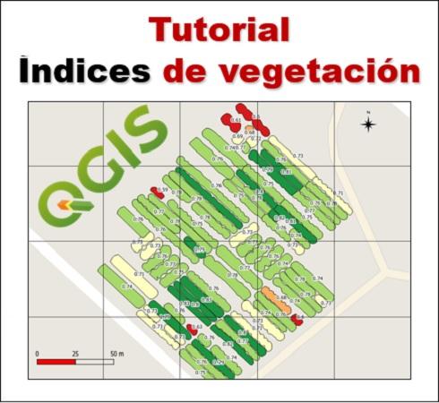 Tutorial Índices de Vegetación
